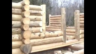 getlinkyoutube.com-The Adirondack Lean-to Company: Building a Log Cabin