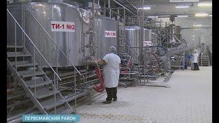 Острый дефицит молока и резкое снижение поголовья коров ждет Алтайский край