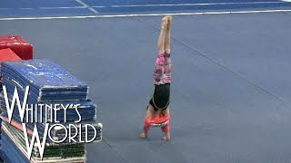 getlinkyoutube.com-Why Gymnasts Don't Wear Shirts | Handstand Fail