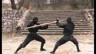 getlinkyoutube.com-Koga ryu ninjutsu  Empty hands