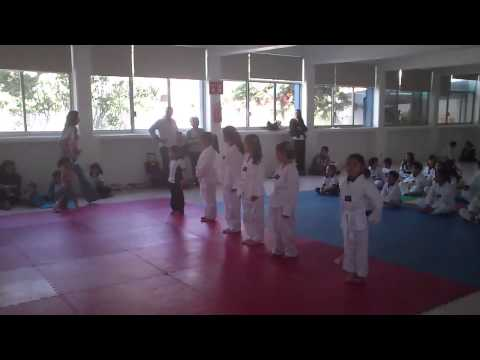 Evaluación Tae Kwon Do Julieta MML