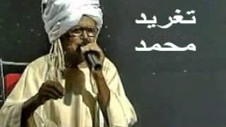 getlinkyoutube.com-بادى _ انت حكمة ولا آية _ تغريد محمد