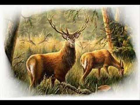 Poľovnícke signály Uvítanie