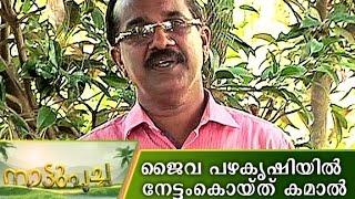 getlinkyoutube.com-Kamaal's Organic Fruit farming | Manorama News