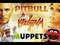 The Muppets sing Timber by Pitbull and Kesha ft. Swedish Chef and the Chickens