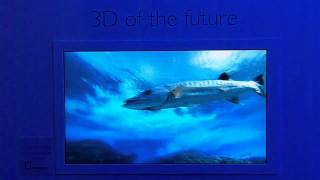 getlinkyoutube.com-Philips 3D TV without glasses