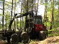 Forwarder Wald Forstmaschine