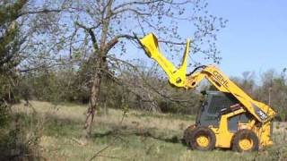 getlinkyoutube.com-Tree Saw