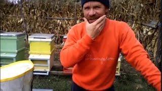 getlinkyoutube.com-Lucrari In Stupina OCTOMBRIE 2015  Restrangerea Familiilor de Albine