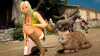 getlinkyoutube.com-Black Desert (검은사막) - New Pet System - Getting a Cat - Final Test (CBT3) - KR