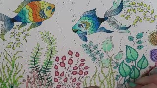 getlinkyoutube.com-Secret Garden Coloring Book | Fish