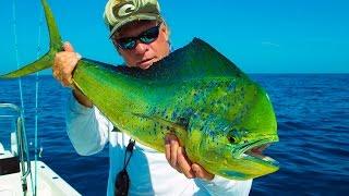 getlinkyoutube.com-Mahi Mahi Redfish Venice La Deep Sea Fishing
