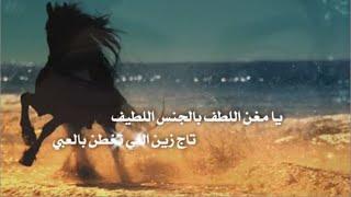 getlinkyoutube.com-شيلة | شاهي مغربي , كلمات سداح العتيبي , اداء صوت الفخامة و رمح الغنانيم