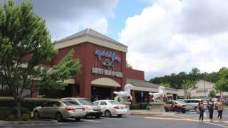 Home Center Village - An 87,292-Square Foot Retail Shopping Plaza Located in Marietta, Georgia