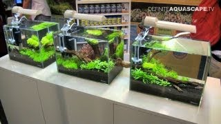 getlinkyoutube.com-Aquascaping - Aquarium Ideas from Aquatics Live 2011, part 1