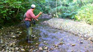 getlinkyoutube.com-小さな川で フライ フィッシング