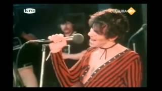 Pinkpop 1980 (4/5) van Halen, J Geils Band