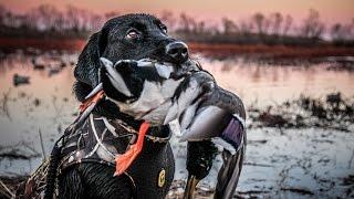 getlinkyoutube.com-The X: Public Land Duck Hunting in Kansas