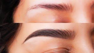 getlinkyoutube.com-Como hacer las cejas perfectas y como hacer crecer la ceja mas todos mis tips