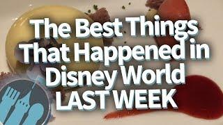 The BEST Things That Happened To Me in Disney World LAST WEEK!