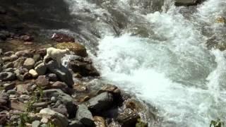 getlinkyoutube.com-amAzing rocky mountain goat :a leap of faith