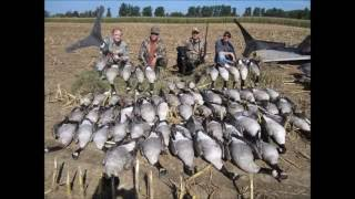 "getlinkyoutube.com-Amazing Canada Goose Hunting- ""Shoot The Core"" BSO"