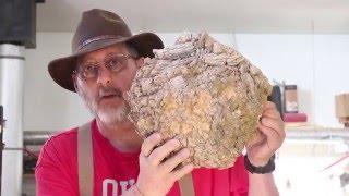 getlinkyoutube.com-Turning Two Burl Bowls: woodturning with Sam Angelo