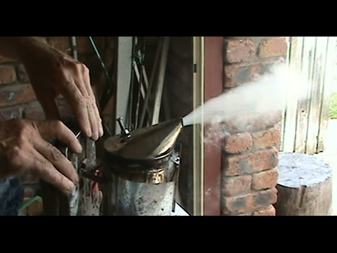 Beekeeping: Lighting a Bee Smoker Plus a Few Tips.