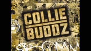 Collie Buddz - [Collie Buddz ] Come Around HQ