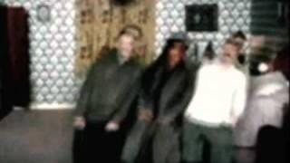 trippy video.mp4
