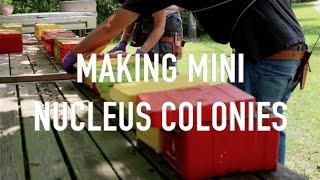 Making Mini Nucs