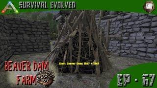 ARK: Survival Evolved - Beaver Dam Farm! - Series Z - EP-67