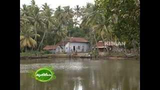 getlinkyoutube.com-success story of a woman farmer in vegetable cultivation