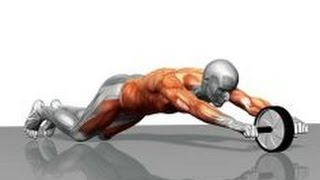 getlinkyoutube.com-How to use an Abs Roller with workout and form guide