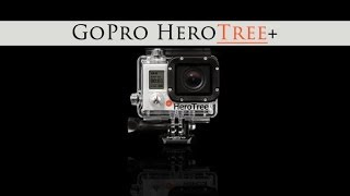 GoPro HERO3 PLUS Silver