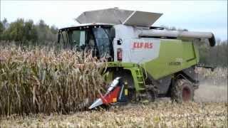 getlinkyoutube.com-CLAAS LEXION 770 Terra-Trac Corn Harvest !
