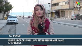 getlinkyoutube.com-Palestine: Cooking Gas Crisis to Be Resolved Within 24 Hours
