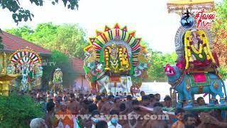 மாவிட்டபுரம் ஸ்ரீ கந்தசுவாமி கோவில் தீர்த்தத்திருவிழா 20.07.2020