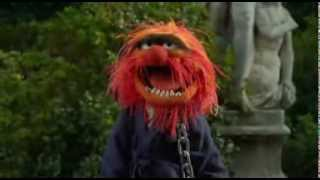 """getlinkyoutube.com-Animal Rejoins The Muppets at Anger Managment: """"In Control ..."""""""