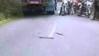 getlinkyoutube.com-வால்பாறை ரோட்டிலே நடைபெற்ற நல்ல பாம்பு விளையாட்டு