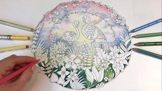 getlinkyoutube.com-Pink Flamingo - Part 1 | MAGICAL JUNGLE | Coloring Book by Johanna Basford