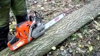 getlinkyoutube.com-Chainsaw Husqvarna 562 XP