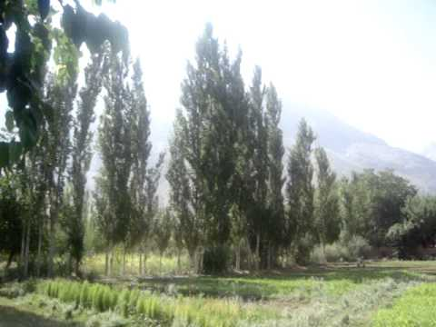 Chitral Chitrali Booni In Augest with bird sounds 2013