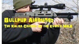 getlinkyoutube.com-Airgun Bullpups!
