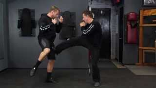 Stop Kick to Hips/Legs (sample lesson)
