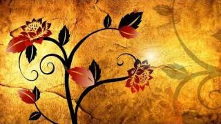 Floral Evolutivo - After Effects CS5