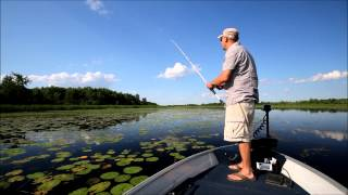getlinkyoutube.com-Tips for Fishing Topwater Frogs for Largemouth Bass
