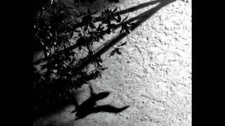 Max Richter - On the Nature of Daylight