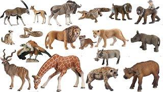 getlinkyoutube.com-Schleich Papo 20 Animals African Savanna Safari ZOO Toys Figurines