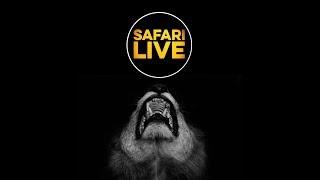 safariLIVE - Sunset Safari - Feb. 21, 2018
